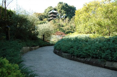 文京区 庭園