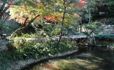 練馬区 庭園