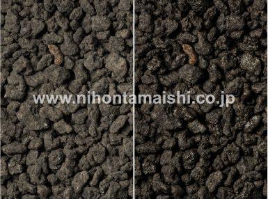 日本の黒火山